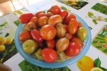 Rien à voir avec les tomates industrielles